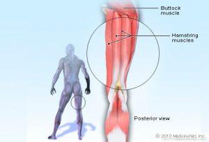 knee-injury-pain-rehabilitation-therapy